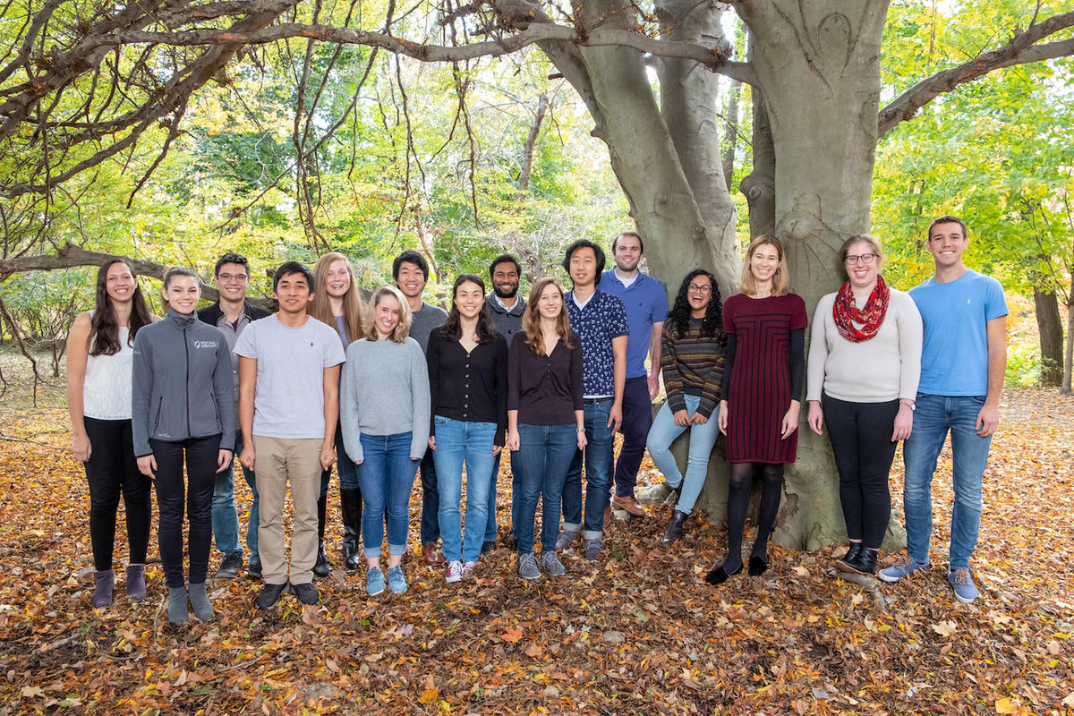 Doyle Lab, October 2019