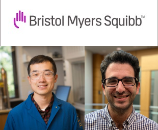 2020 BMS Lectureship in Synthetic Organic Chemistry