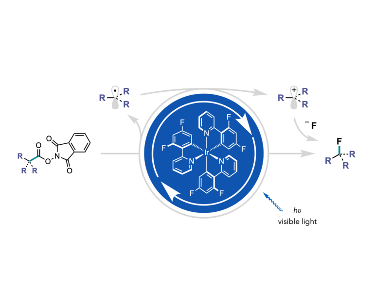 Light mediated reduction of N-hydroxyphthalimide esters